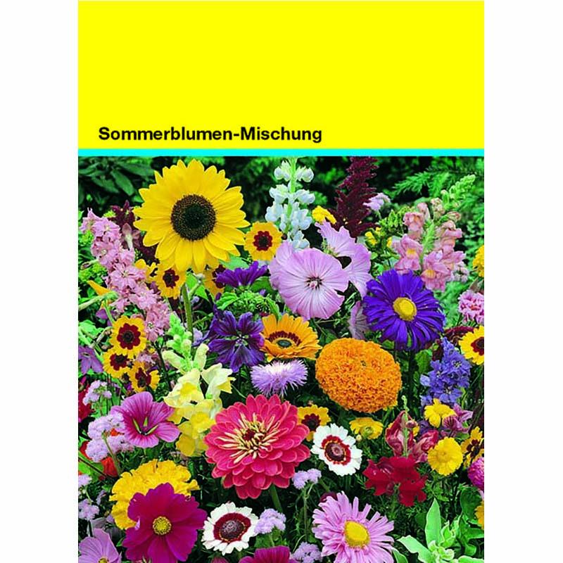 Samentütchen bunte Blumenmischung 82 x 114 mm