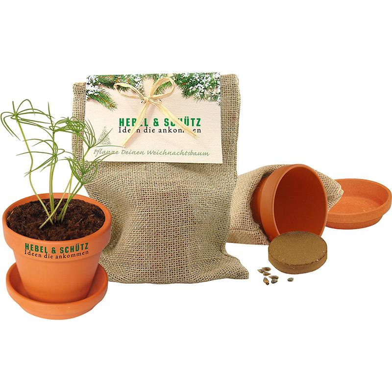 Natur - Säckchen 'Pflanze deinen Baum'