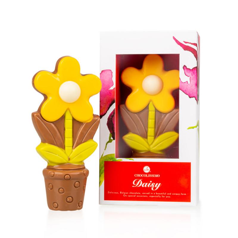 Geschenkpackung Choco Daisy Yellow