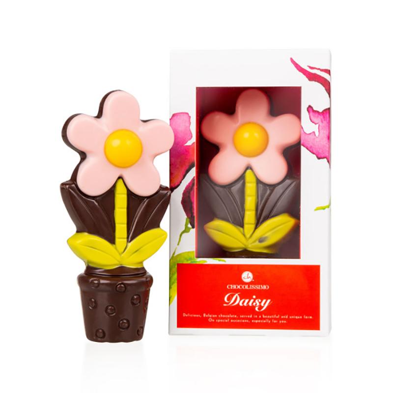 Geschenkpackung Choco Daisy Pink